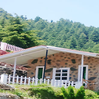 Green Forest Resorts