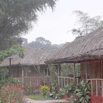 Bamboo Groove Cottage Thekkady