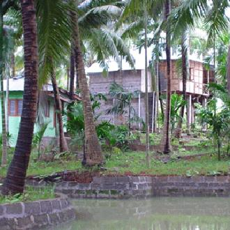 Palm Grove Eco Resort