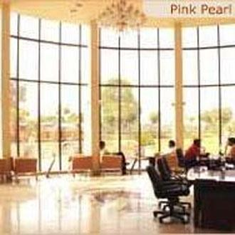 Pink Pearl Hotel & Fun City JAIPUR