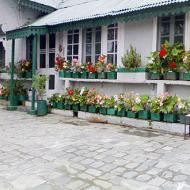 Anand Bhawan Cottage