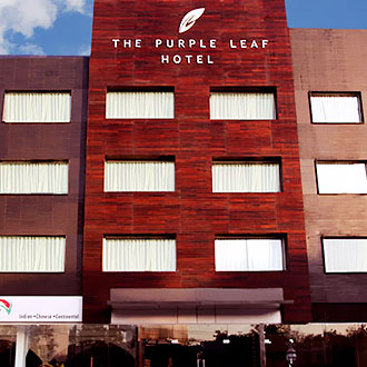 The Purple Leaf Hotel