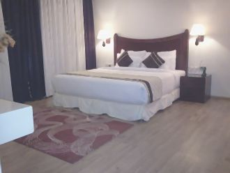 Green Earth (Gurgaon), Golf Course Road, Deluxe A/C Room