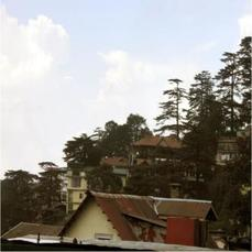Property On A Hilltop With Amazing City Views Of Shimla!!