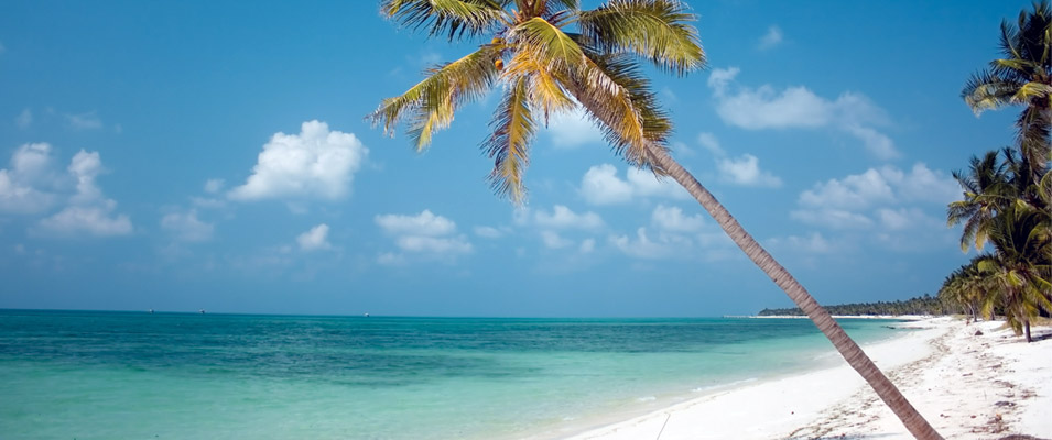 Lakshadweep Hotels